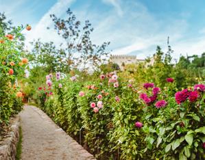 https://www.gardenrouteitalia.it/gr_offers/giardini-di-castel-trauttmansdorff/