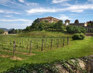https://www.gardenrouteitalia.it/gr_itineraries/da-padova-citta-darte-al-paesaggio-giardino-dei-colli-euganei/