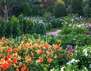 https://www.gardenrouteitalia.it/gr_offers/villa-taranto/